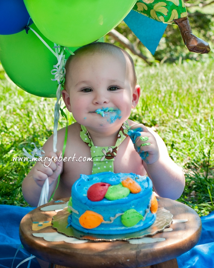 Birthday Cake Smash, 1st birthday boy, Phillipe Park, Safety Harbor